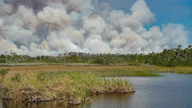 Smoke from a fire at Picayune Strand State Forest on Monday, March 5, 2018. The fire has caused on-and-off road closures and sent smoke wafting across Southwest Florida.