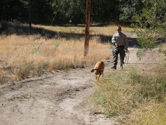 Deputy Ochoa follows Windy through a training track
