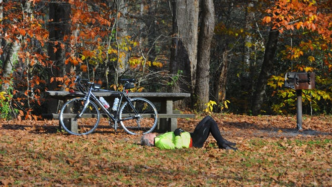 Joe Goldston rests at a pullover picnic area near Looking Glass Falls  in Pisgah National Forest after a long bike ride in this 2011 photo. Proponents of turning part of the forest into a national recreation area say it would increase visiting to the area.