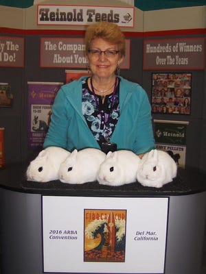 Patty Percy is shown with her top winning dwarf hotot rabbits at the National American Rabbit Breeders Convention   held in San Diego on Oct. 10.