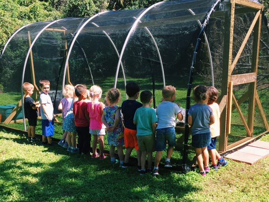 At Alphabet farms in Palm City, preschool students