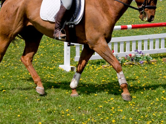 Woodedge Hunter & Jumper Show takes place at DREAM Park in Logan Township.