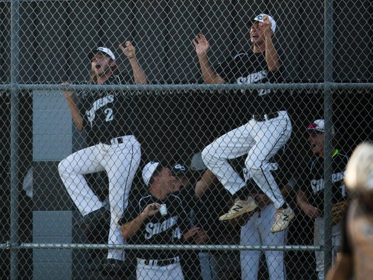 The Gulf Coast Sharks climb the fence in celebration after a run during the class 7A regional final game against Land O'Lakes-Sunlake at Gulf Coast High School on Tuesday, May 23, 2017.