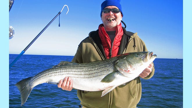 2016 file photo: Bob Danyuk caught this 30-pound striped bass while fishing with Capt. Dave DeGennaro.