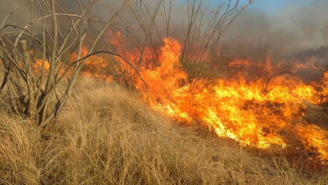 On April 26, 2017, the Arizona Department of Forestry said the Sawmill Fire had grown to 20,000 acres. By the night of April 27, 2017, the fire had burned nearly 47,000 acres.