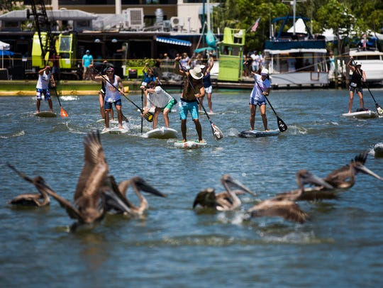 Paddle boarders take off from the starting line for