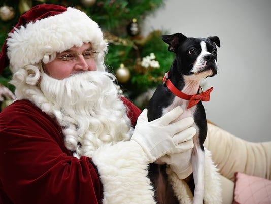 636151812043887176-Santa-Paws-Photos-1.jpg
