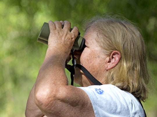 Tice Supplee, of Audubon Arizona, bird watches in Agua Fria National Monument, one area where the group is asking researchers, wildlife officials and the public to help fill the gaps on bird population data.