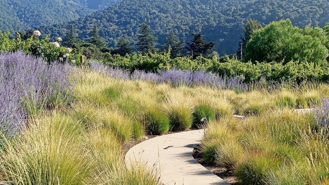The view from Bernardus Lodge & Spa in Carmel Valley showcases the Santa Lucia Mountains.