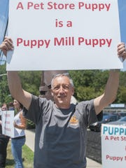 """Alan Braslow of Cherry Hill joins other animal activist as they protest outside of Pat's Pups, a new pet store located in Saw Mill Village shopping center on Route 70 in Cherry Hill. The activist believe that the store is getting the puppies it sells from so-called """"puppy mills,"""" establishments that breed puppies in inhumane conditions for sale. 08.06.15"""