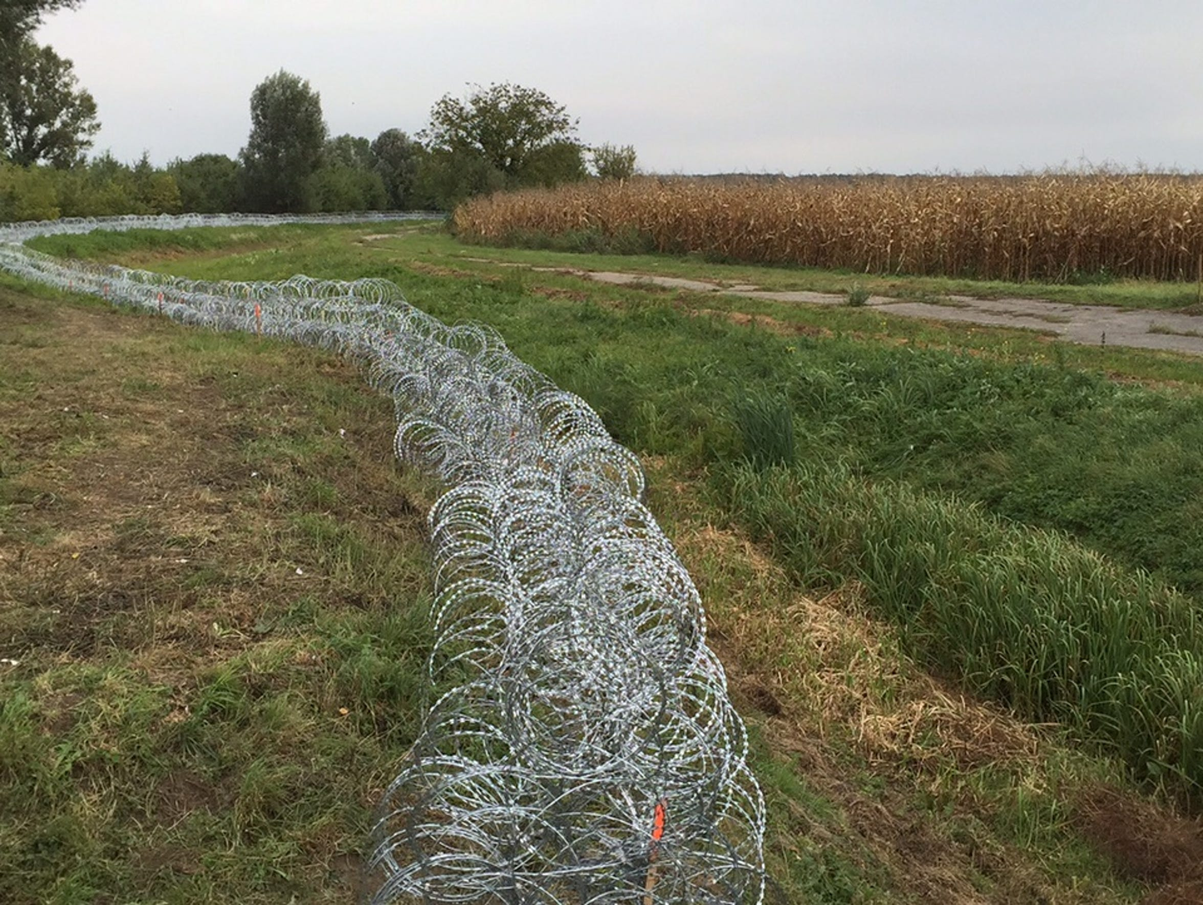 Barbed wire is seen on the Hungary-Croatia border on