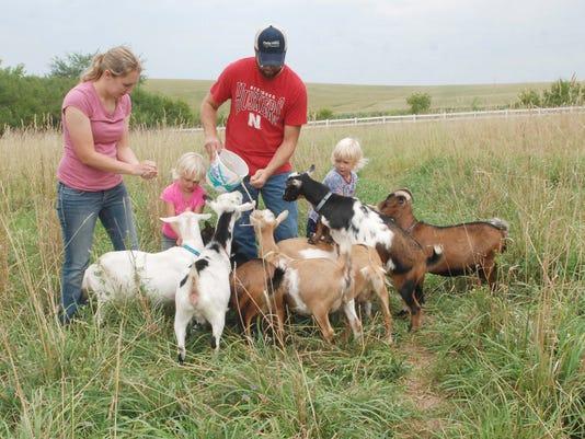 WSF 0825 goat milk soap
