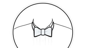 Illustration of a finished bow tie.