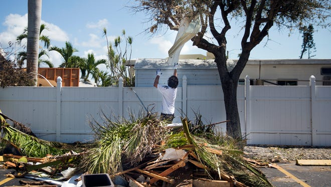 Kristian Schomburg attempts to grab a sheet of metal from a tree to add to a debris pile while cleaning up at the Snook Inn on Marco Island on Tuesday, September 12, 2017, two days after Hurricane Irma.