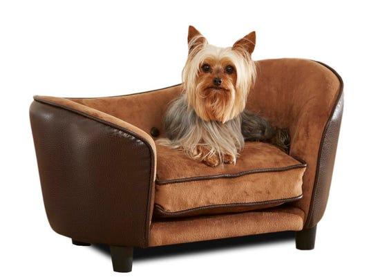 Pets-New Furniture_Atzl.jpg
