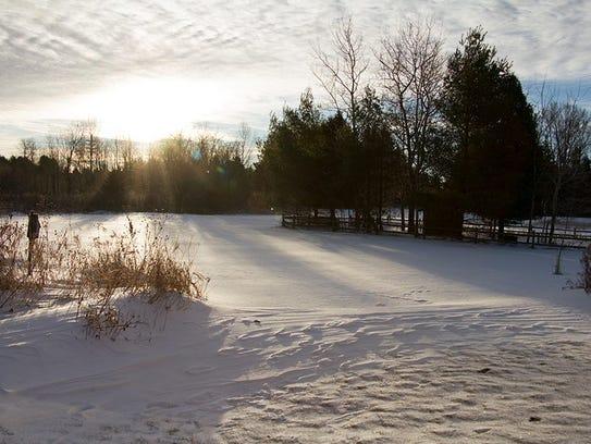 Woodland Dunes in December.