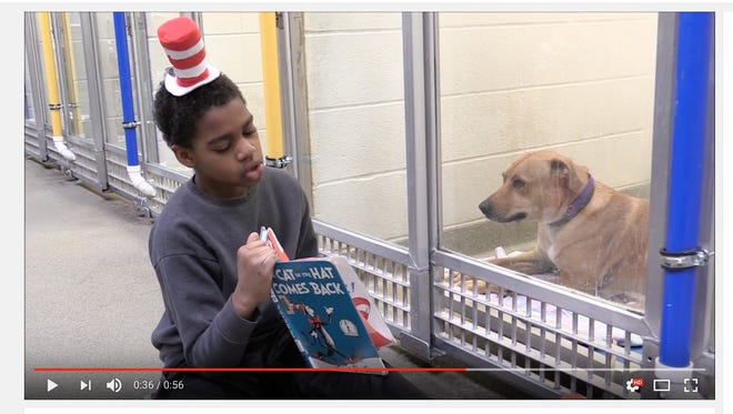 A group of students celebrated Read Across America Day by reading Dr. Seuss books to anxious shelter animals at the Humane Society of Missouri this week.