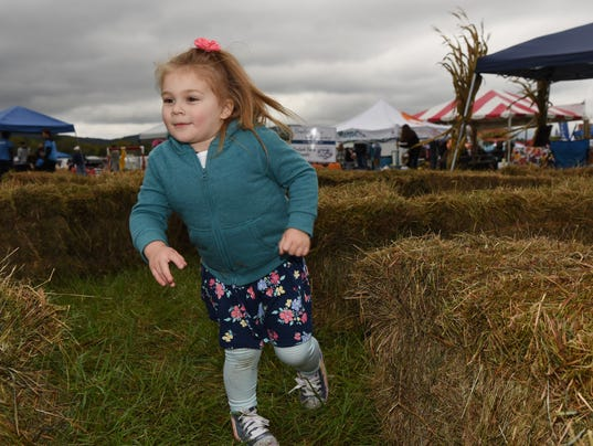 Stormville Airport's Wine, Cider, Food Truck & Car Show Festival