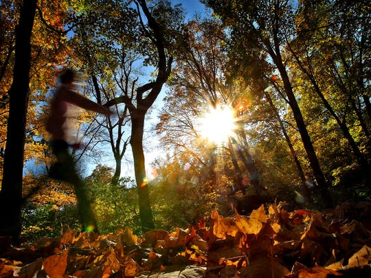 Amid a wash of fall color from the surrounding trees, a person walks at Percy Warner Park in Nashville.