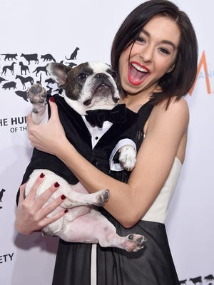Christina Grimmie with Baxter attend the To The Rescue! New York Gala at Cipriani 42nd Street on November 13 in New York City.