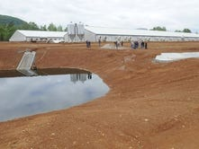 Environmental agency denies hog farm's permit