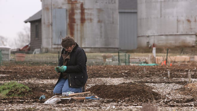 Susan Barberio of Hillsborough, plants peas and shallots in her plot at the Community Garden at Duke Farms in Hillsborough. The property models many examples of sustainable living.
