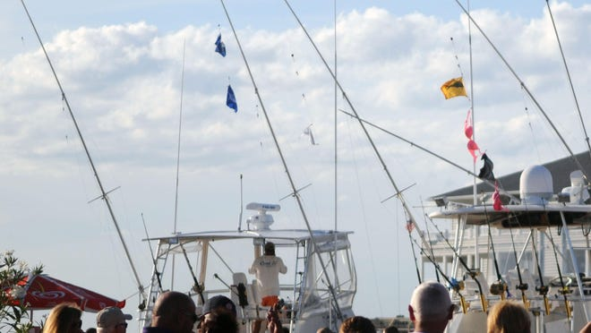 Incoming boats show the flags to let the crowd know of the catch. Bras also fly in support of breast cancer awareness. Part of the Poor Girls Open prize money is donated to the American Cancer Society.