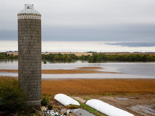 A dairy farm is surrounded by floodwaters on Thursday,