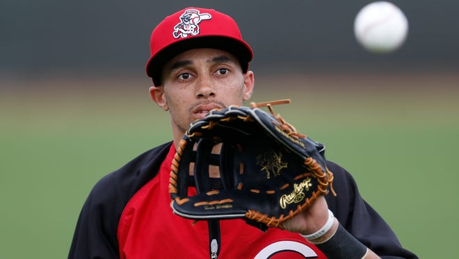 The Reds' Billy Hamilton catches a ball during practice in Goodyear on Feb. 25.