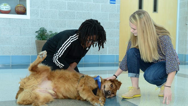 Michaela Redden and Cammie Mottley, sophomores at Pocomoke High School, take a moment out of their day to give a few belly rubs to Rudy, the newest member of the Pocomoke High School's staff.