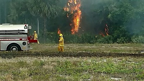 Firefighters from Martin County Fire Rescue and the Florida Forestry Service extinguished a 14-acre fire Sunday in the Canopy Creek neighborhood of Palm City.