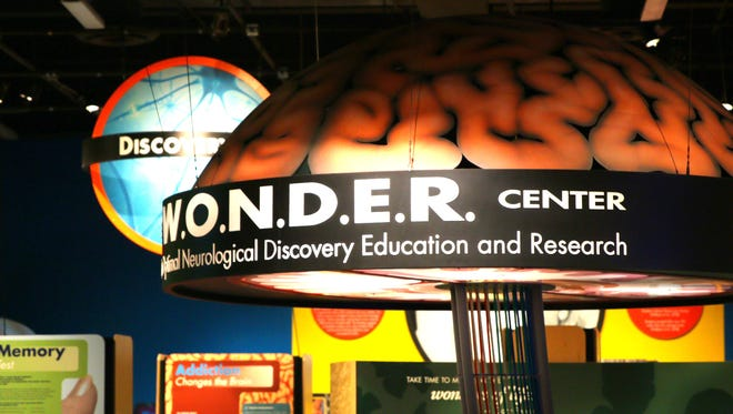 In the WONDER Center, students can interact with the brain and see synapses react to their touch at the Arizona Science Center in downtown Phoenix.
