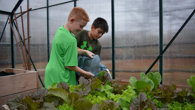 Rehoboth Elementary School fourth grader Mason Rogers and fifth grader Jorge Lagunes water a bed of lettuce inside the school's greenhouse.