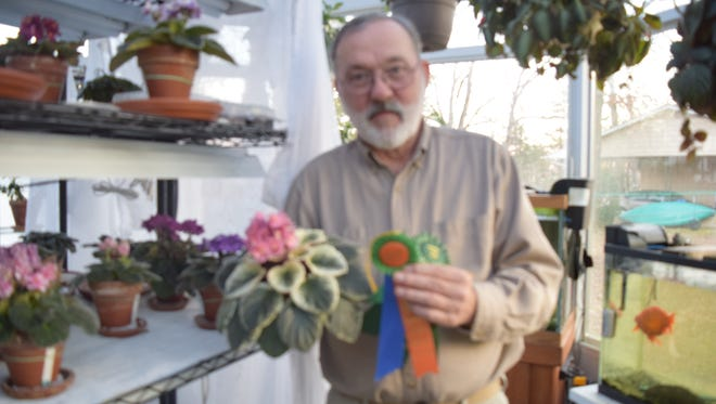 """Marion County Master Grdener Harold Mosier of Bull Shoals, won both the National Garden Club's """" Horticultural Excellence"""", (Best in Show) and a """"Growers Choice Award"""", (Best in Division) plus a quantity of blue ribbons, at the recent 25th annual Arkansas Flower and Garden Show in Little Rock.."""