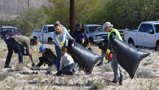 Volunteers from Friends of the Desert Mountains, Desert Trails Hiking Club, Southwest Community Church middle school youth group and representatives from the U.S. Fish & Wildlife Service pull invasive Sahara Mustard plants at the Coachella Valley National Wildlife Refuge in Thousand Palms on Tuesday, March 29, 2016.