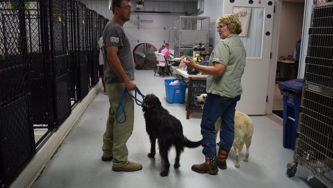 People from all over brought their dogs for the opportunity to receive low cost rabies shots and microchips.