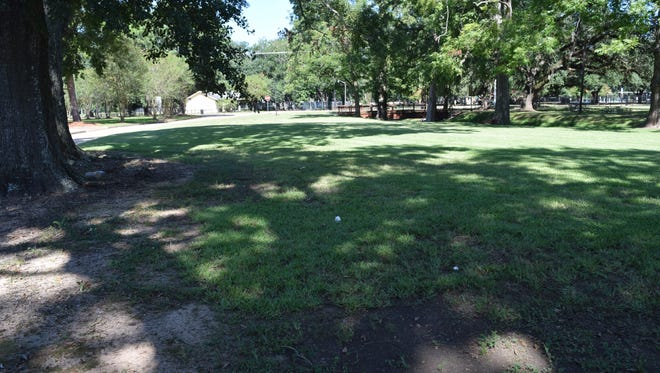 This land between Gilbert Street and Hynson Bayou will become home to the city's new dog park.
