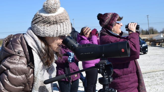 Kim Bassford of Ventnor looks at an eagle nest through a spotting scope at Beaver Dam Boat Rentals during the 17th Annual Cumberland County Winter Eagle Festival on Saturday, Feb. 4. Photo/Jodi Streahle