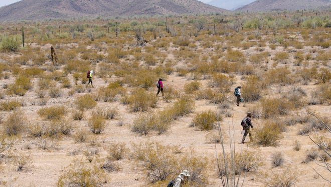 No More Deaths, a humanitarian group, searches for the remains of migrants who died in remote rugged terrain after crossing the U.S. border through the Organ Pipe Cactus National Monument near Ajo, Arizona, in 2017.