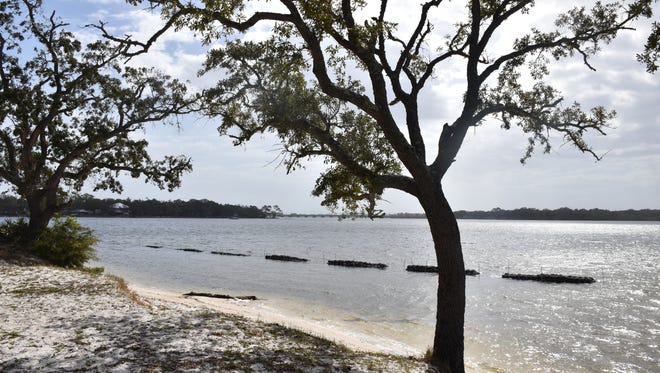 """Escambia County installed a """"living reef"""" of oyster shells in Bayou Grande to stop erosion and improve water quality at Navy Point Park. Some area residents are concerned the reefs will be harmful to the ecology."""