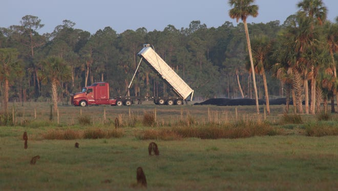 A truck dumps a load of biosolids shortly after 7 a.m. May 1, 2018, on a Pressley Ranch pasture west of Blue Cypress Lake.