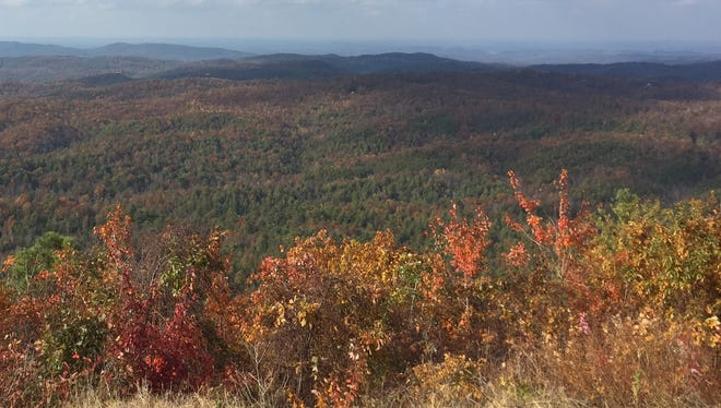 Cherohala Skyway should be among the best places to view fall colors this weekend.