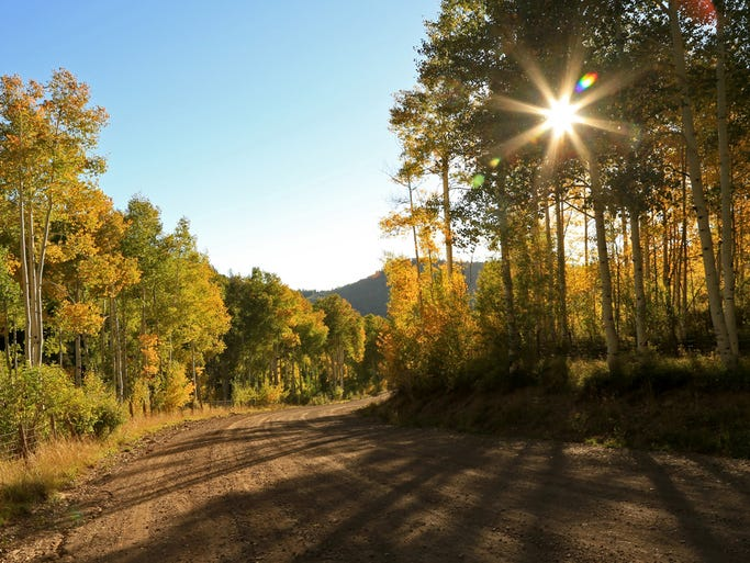 Autumn colors on the Kolob Terrace Road.