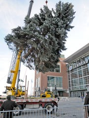 This year's holiday tree outside Lambeau Field will be cut down on Monday and erected on Harlan Plaza.