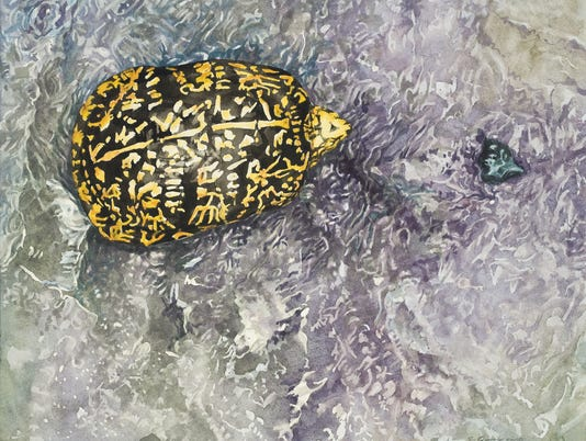 Brian Gordy turtle painting outdoors column Aug 8 2018 use only