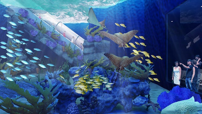 """OdySea Voyager is a new attraction within OdySea Aquarium that takes passengers aboard a """"submarine"""" that moves them through the habitats of sea turtles, rays, sharks and more aquatic life."""