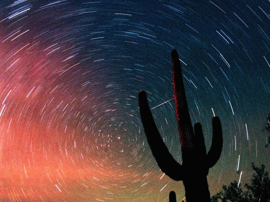 A meteor from the Leonids meteor shower, visible as a diagonal streak between the fingers of a cactus plant, is seen in this time exposure early Sunday, Nov. 18, 2001, in Tucson, Ariz.