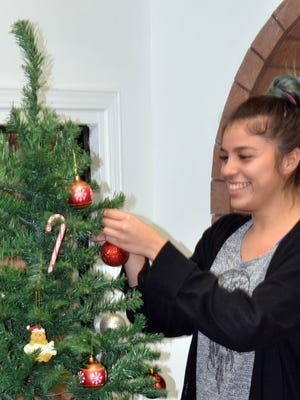 Jessica Perez, Deming Animal Shelter receptionist, puts the finishing touches on the shelter's Christmas Tree. Under the tree are donations from the community that will benefit the shelter pets.