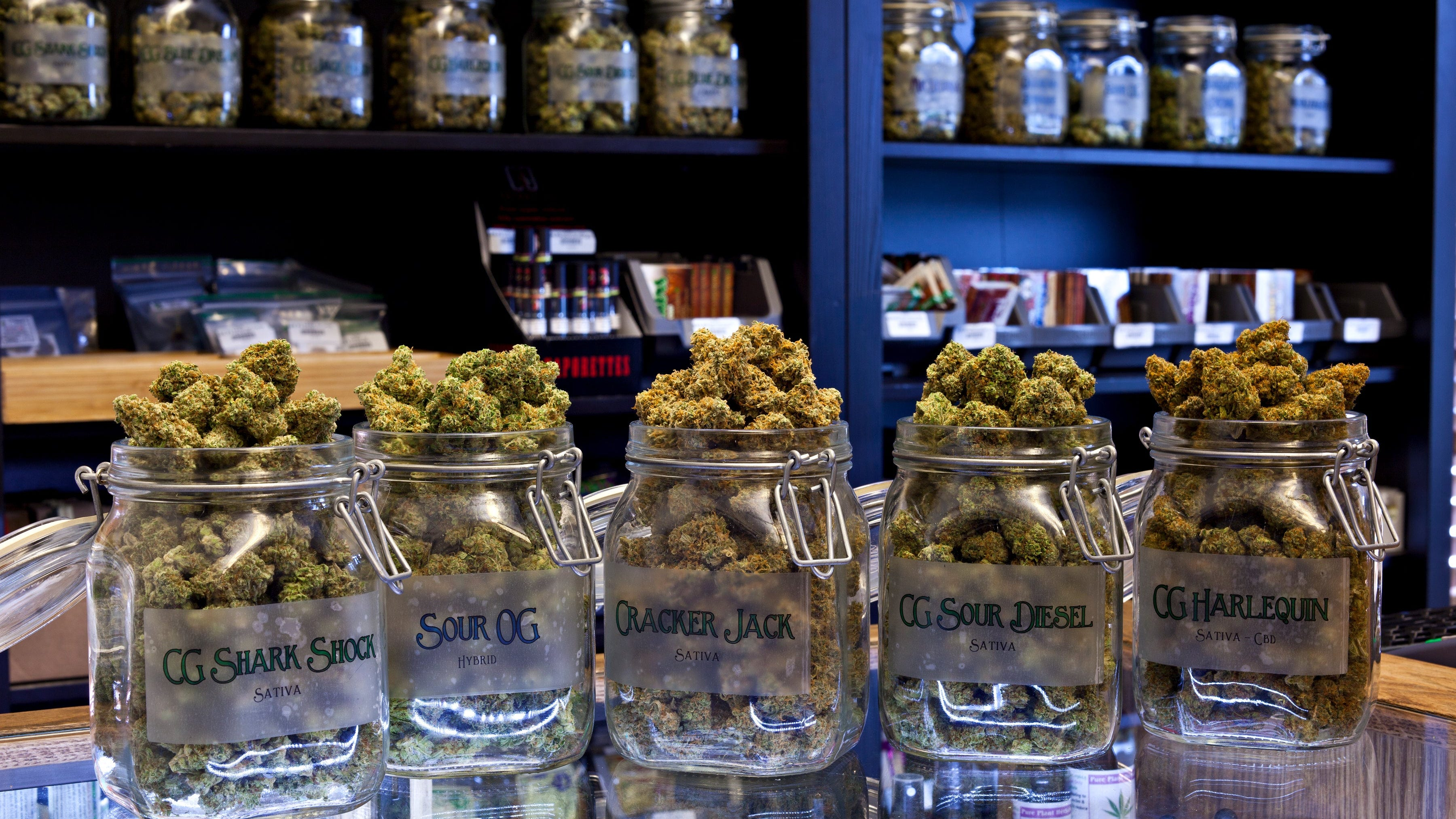 herbal care llc sues nevada over state regulations, excessive fines  reno gazette-journal