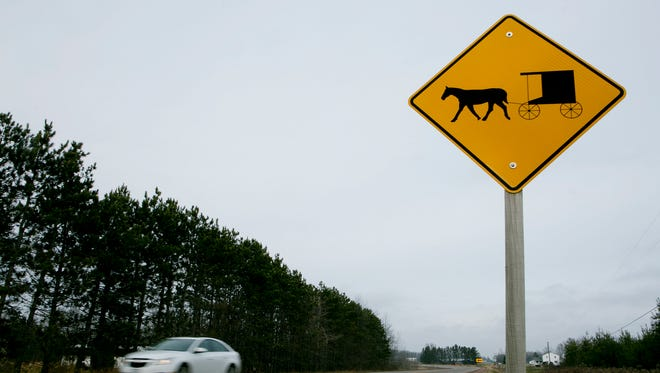 A horse and buggy warning sign is seen on Highway 186 in the town of Arpin. Wood County has been able to increase the number of caution signs on county highways with a grant.